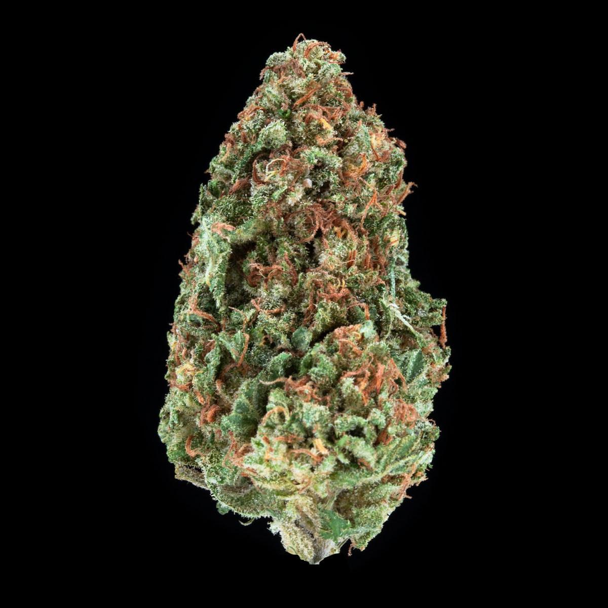 Kaya Weed Strain CBD Jah Cures