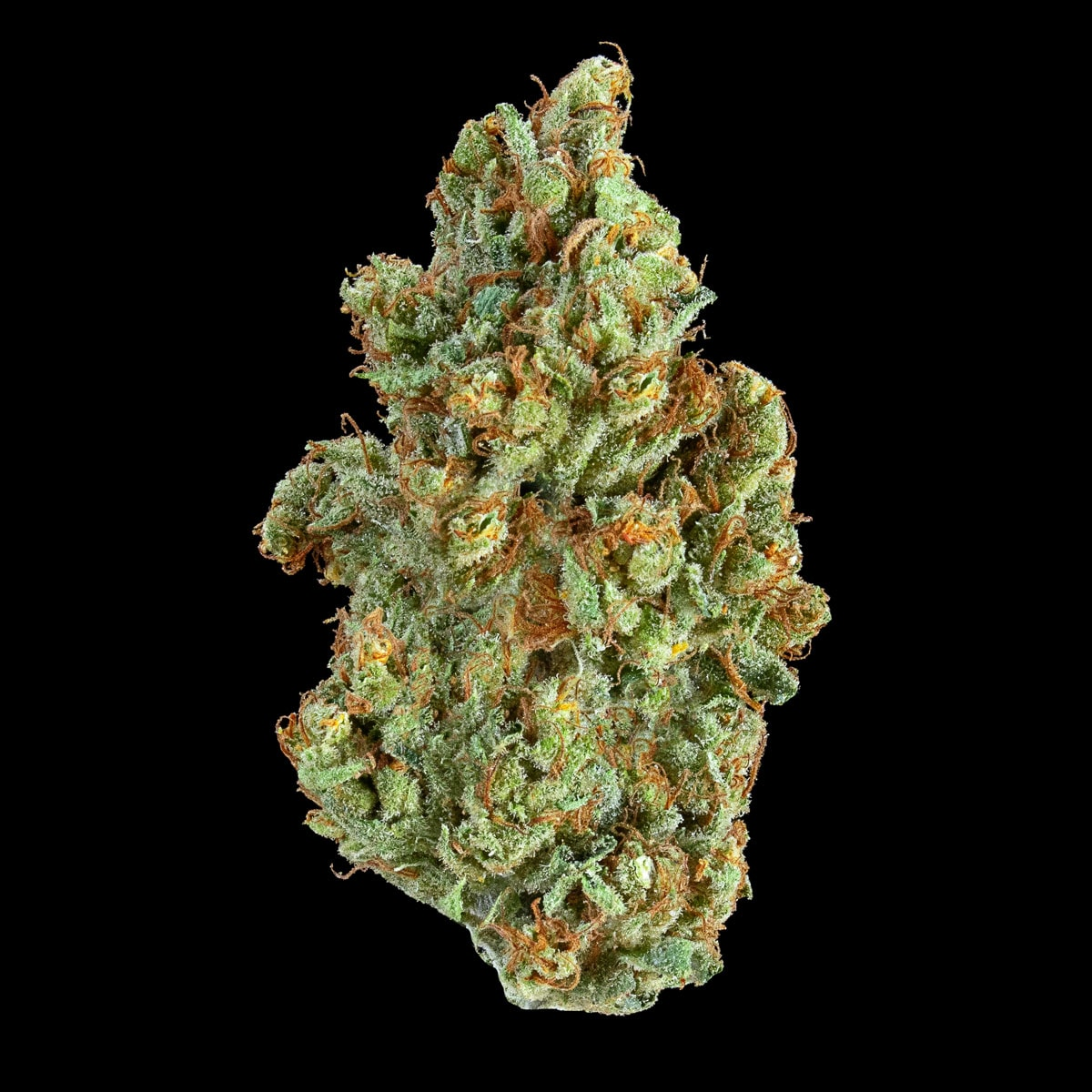 Kaya Weed Strain ACDC